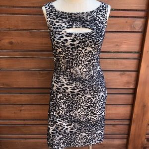 Betsey Johnson leopard cocktail dress size Small/6